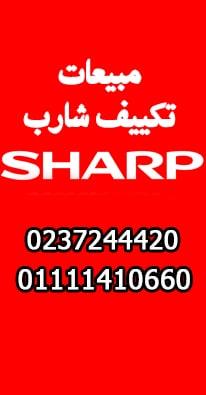 مبيعات شارب العربي